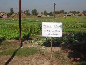 センランプロジェクトの看板と農場・家屋