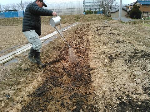 s-3未熟堆肥の分解を促すためにEMⅡ型ボカシを10aあたり200kgとEM1号100倍活性液を10aあたり100L散布