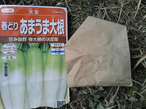 s-ダイコン写真1 (1)