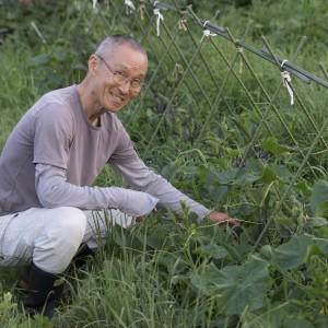 ナスの畝から自然に生えてきたキュウリと中川原さん